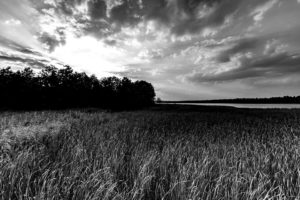 lake-1611044_960_720